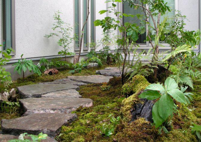 東京都 杉並区 お庭工事 植栽完成の写真