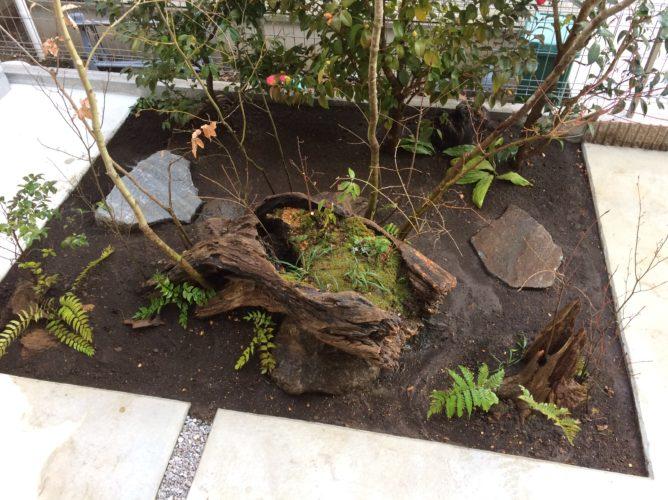 神奈川県中央林間 植栽工事 早春