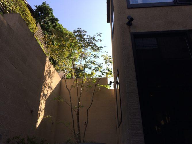 玉川学園にある植木剪定の紹介