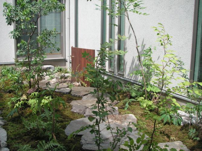 東京 杉並区 新規お庭工事の完成